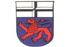 Bonn Twinning Anniversary Family Activity Day