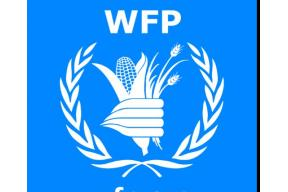 Internship at the World Food Programme in Berlin