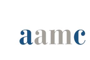 AAMC Foundation Engagement Program for International Curators