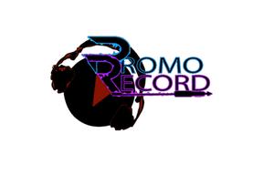 Promo Record Com' Budget