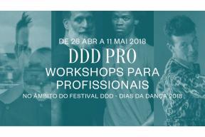 DDD Pro – Professional Workshops Porto Portugal