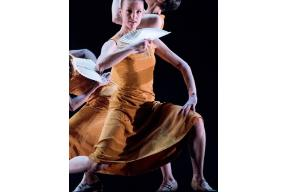 In Body- Innovative contemporary flamenco dance