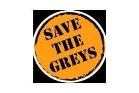 Save the Greys