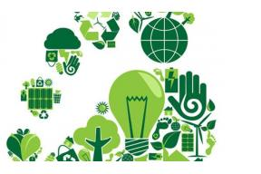What can you do to reduce your carbon footprint?