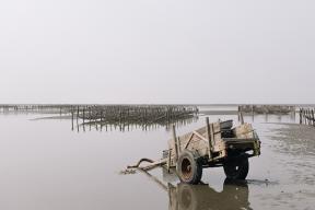 Davide Mandolini: L'isola di Formosa
