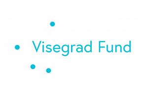 Visegrad+ Grants