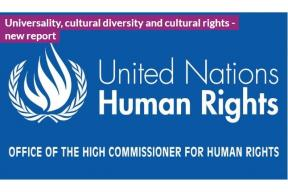 Universality, cultural diversity and cultural rights (report)