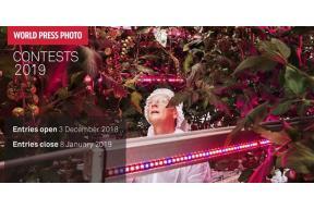 THE WORLD PRESS PHOTO DIGITAL STORYTELLING CONTEST