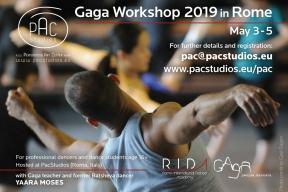 GAGA Workshop Rome 2019