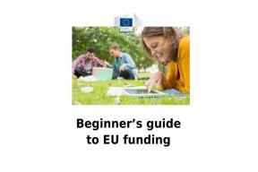 A Beginner's Guide to EU Funding