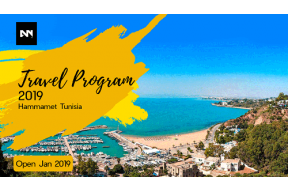 Artnoise Travel Program