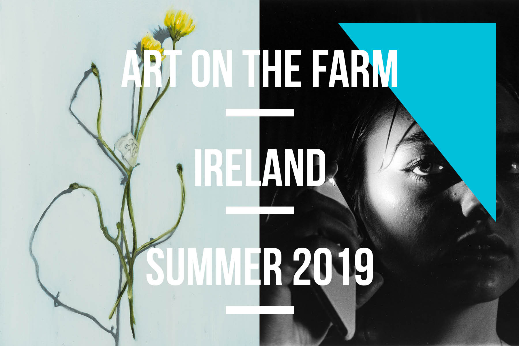 Art On The Farm, Summer Art Programs