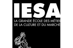 Art studies online by IESA