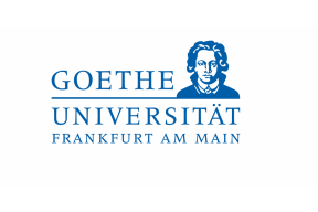 The Goethe Goes Global scholarship for master's programmes