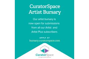 CuratorSpace Artist Bursary #3