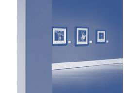Curso de Especialización en Conservación y Gestión de Museos