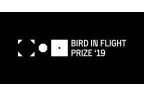 Bird in Flight Prize