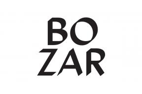 Stagiaire communication Bozar Théâtre & Dance, Littérature & Agora