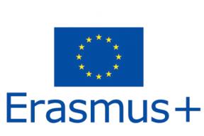 Traineeship Erasmus+