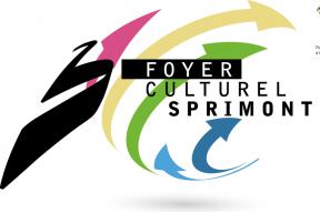 Appel à candidatures: Centre culturel de Sprimont recrute un directeur