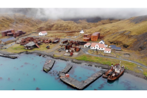 Site-Specific Art Commission: Grytviken Whaling Station, South Georgia