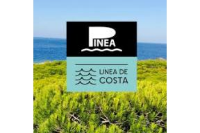 Art residency organised by PINEA A.I.R