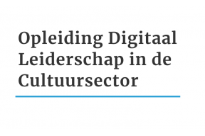 Online Training: Digital Leadership in the Cultural sector