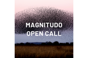 Open Call - MAGNITUDO, a collective act of voicing