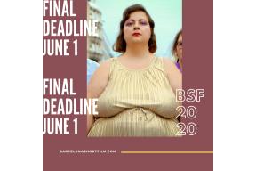 Barcelona International Short Film & Video  Festival 2020