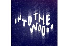 Into the Woods Festival | 11-12 September 2020
