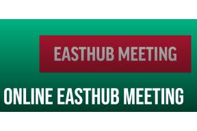 Online EastHub Meeting