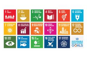 Call for Applications: Culture and the Sustainable Development Goals