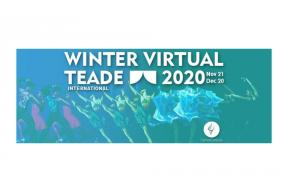 International Winter Virtual TEADE 2020