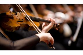 Open Vacancy: Concertmaster