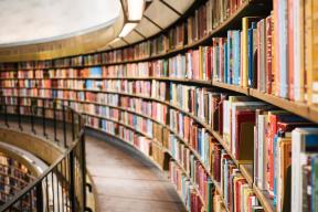 JOB OFFER: Junior librarian