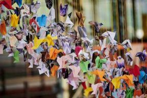 Origami for Life by Charles Kaisin