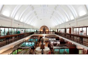 JOB OFFER: African Collections Research Hub Co-ordinator