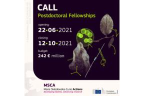 MSCA Postdoctoral Fellowships 2021