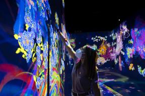 EXHIBITION: TeamLab, Art, Technology and Nature