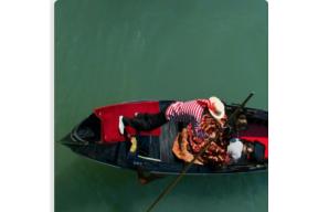 COURSE: Venice Biennale Revealed