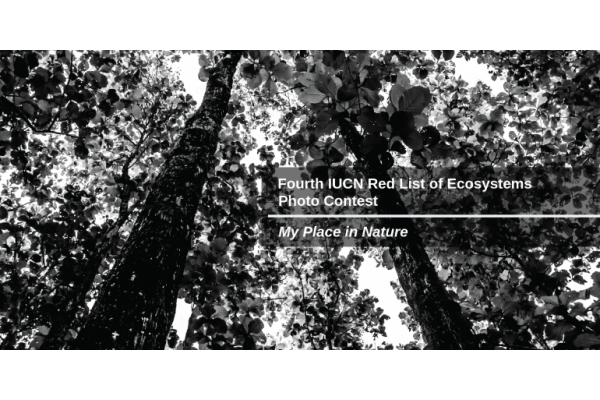 Fourth IUCN Red List of Ecosystems Photo Contest – My Place in Nature