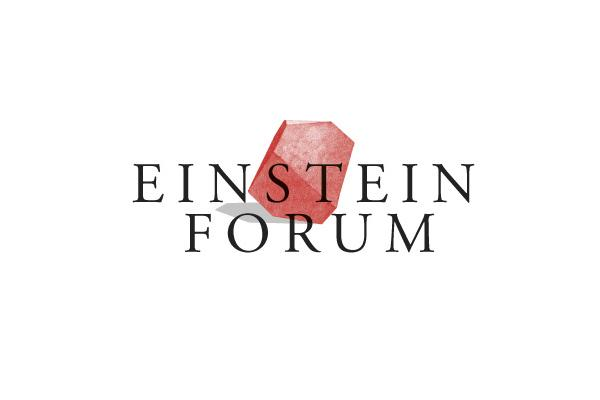 Einstein Fellowship