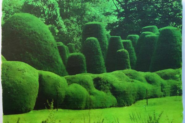 The Westmorland Landscape Prize