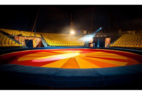 The situation of circus in the EU Member States - Study report