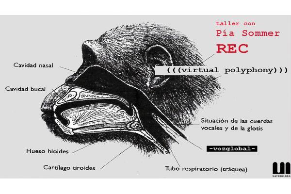 Taller online REC ''Polifonías Virtuales'' - con Pía Sommer