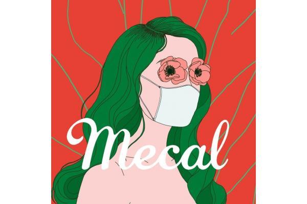 Mecal Pro, 23º
