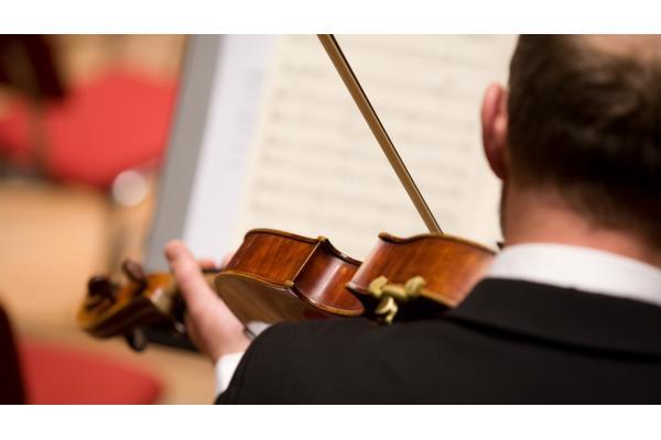 Principal viola   2 vacancies - Netherlands Philharmonic Orchestra
