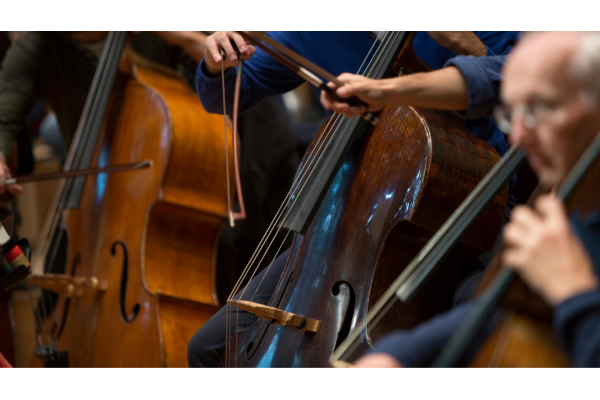 Vacancy: Co-principal Double bass
