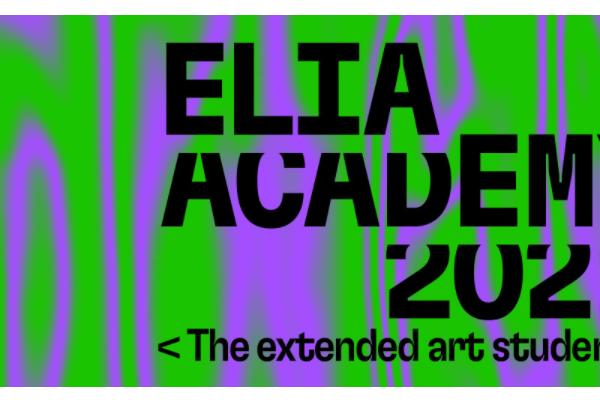 ELIA Academy 2021: <The extended art student>